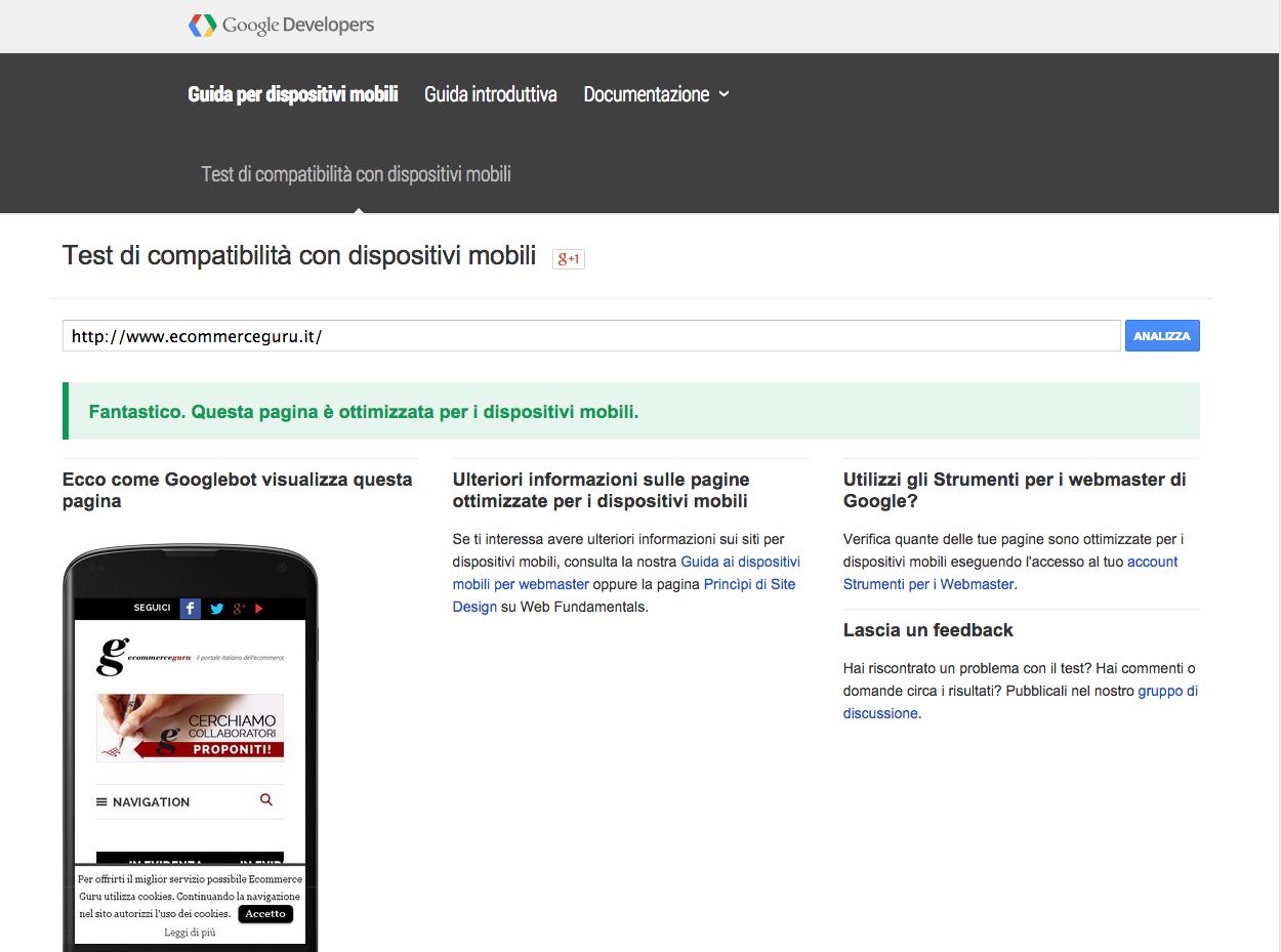 Test mobile-friendly di Google | Ecommerce Guru