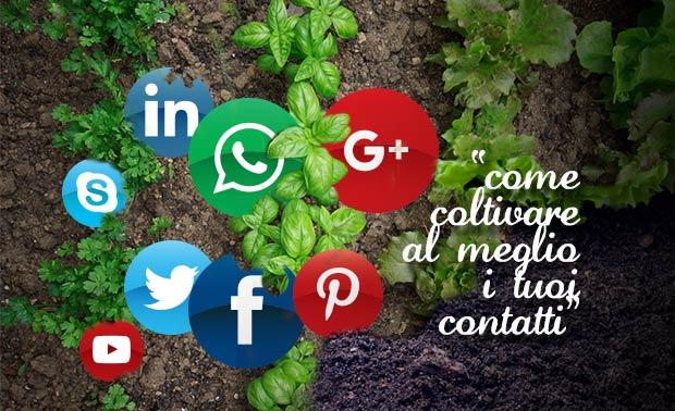 ecommerce guro socialmark