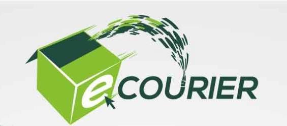 Logistica per un e-commerce: il caso Ecourier
