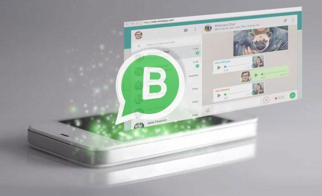 E-commerce di tutto il mondo unitevi: è arrivato Whatsapp Business! - Ecommerce Guru