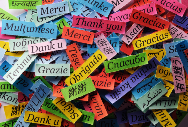 blog multilingua