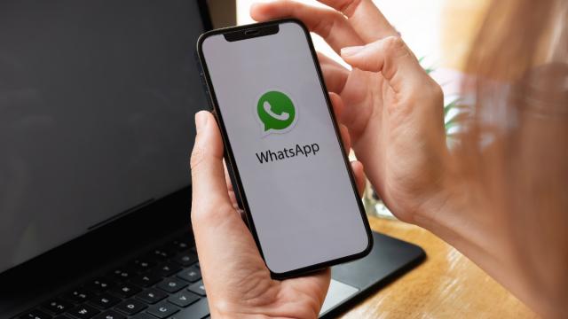 Nuova funzione Whatsapp: un account su più dispositivi